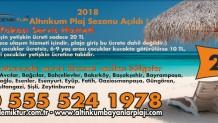 2018 Sezonu Altınkum Bayanlar Plajı Avrupa Yakası Servis Hizmeti